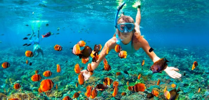 woman snorkelling with colourful fish