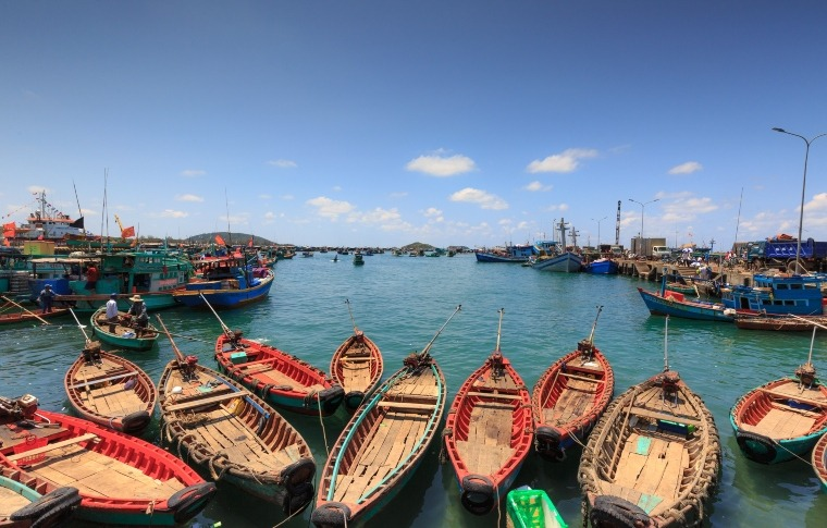rows of boats